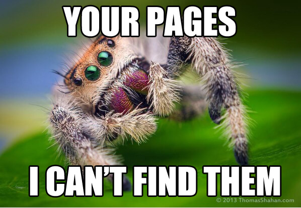 Search_Engine_Spider_Paw_print_and_mail